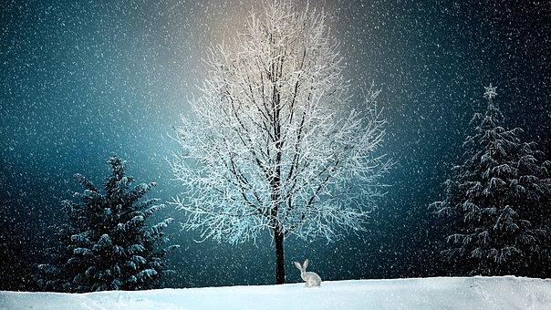 winter-2896970__340